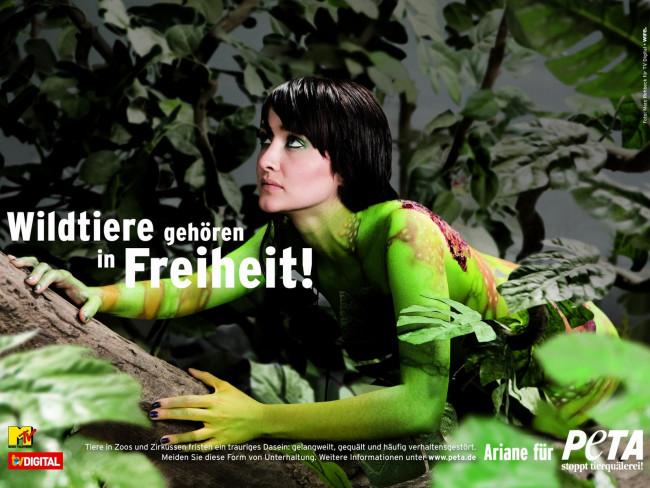 Галерея: Ведущие немецких музыкальных каналов снялись голыми в борьбе за пр
